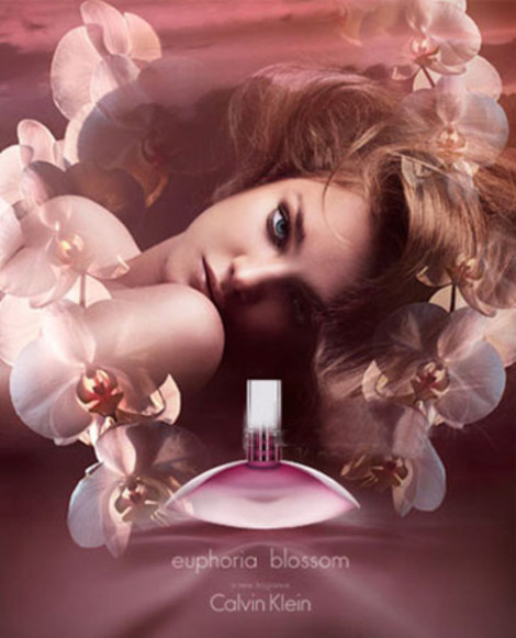 euphoria blossom Calvin Klein